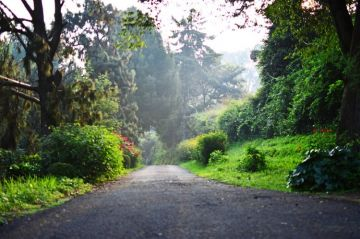 MOST AMAZING ROAD TRIPS BANGALORE TO BANDIPUR TO OOTY