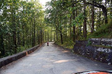 MOST AMAZING ROAD TRIPS DARJEELING TO PELLING