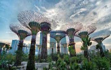 Singapore Duke Tour Package A1