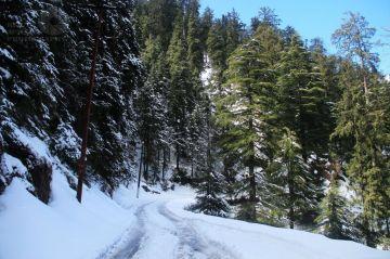 BEST WINTER HONEYMOON DESTINATIONS IN DALHOUSIE