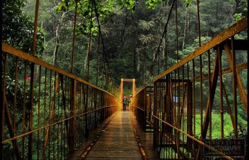 BEST HILL STATIONS TOUR PACKAGE IN COORG