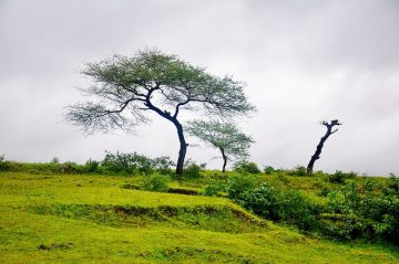 BEST HILL STATIONS TOUR PACKAGE IN SAPUTARA