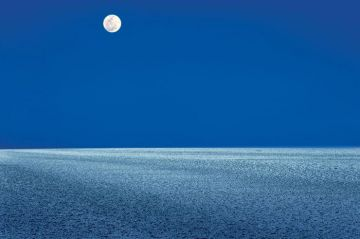 RANN OF KUTCH GUJARAT THE WHITE DESERT THAT GETS COLORED WIT