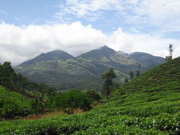 WAYANAD KERALA WHERE NATURE STAYS UNPERTURBED