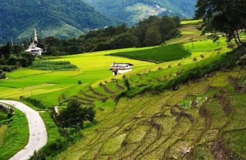 ZIRO AN ESCAPE FOR THE PEACE SEEKERS