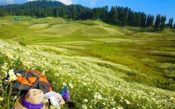 GULMARG PRETTIFIED WITH COLORFUL FLOWERS THROUGH AND THROUGH