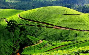 OOTY DEFINING PICTURESQUE
