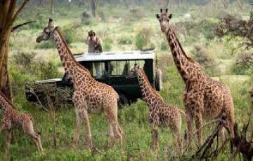 9 Days Kenya safari Beach Holiday