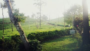 BEST COORG HILL STATIONS FOR PERFECT SUMMER RETREAT AROUND BENGALURU