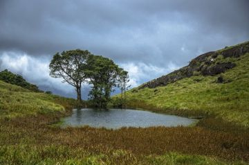 TREK TO CHEMBRA PEAK WAYANAD