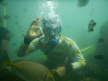 BEST ADVENTURE ACTIVITIES TO DO SCUBA DIVING IN MALVAN