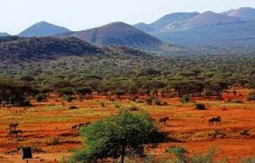 6 DAY SAFARI NAIROBI-TSAVO EAST-MOMBASA