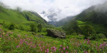 VALLEY OF FLOWERS RESERVE NATIONAL PARKS AND WILDLIFE SANCTUARIES