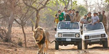 GIR RESERVE NATIONAL PARKS AND WILDLIFE SANCTUARIES
