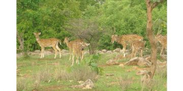 MADHAV RESERVE NATIONAL PARKS AND WILDLIFE SANCTUARIES
