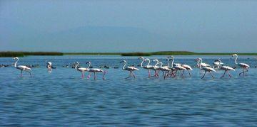 KEIBUL LAM JAO RESERVE NATIONAL PARKS AND WILDLIFE SANCTUARIES