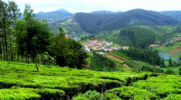 OOTY ECONOMICALLY CHEAP PLACES TO VISIT IN INDIA