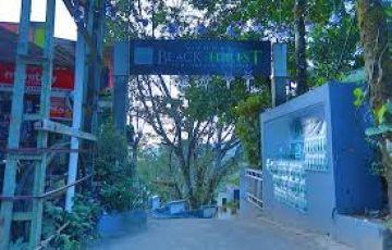 Cochin Thekkady Sightseeing  Tour Package A1