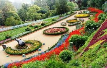 OOTY & Kodaikanal  Hotel + Taxi Package at best rate  @ 10 k