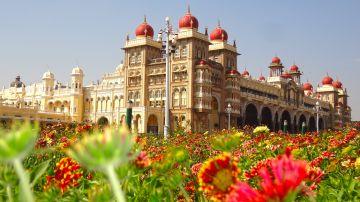 Mysore- coorg- ooty