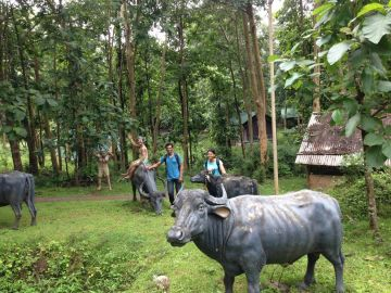 HAVE AN ADVENTUROUS DAY OUT AT KULGI NATURE CAMP IN DANDELI