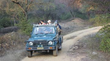 Jeep Safari at Dudhsagar