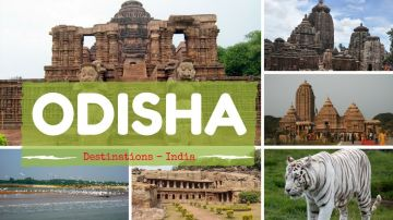 exotic odisha package 3night/ 4days