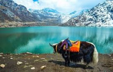 Majestic Sikkim Package
