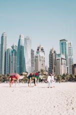 Explore Dubai with Abu Dhabi