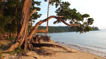 Andaman tour for 3Nights and 4Days