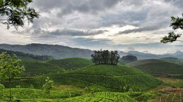Stunning Spots of Kerala
