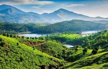 Munnar Delights  Honeymoon Special