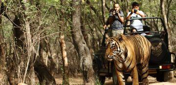 Kanha National Park From Nagpur