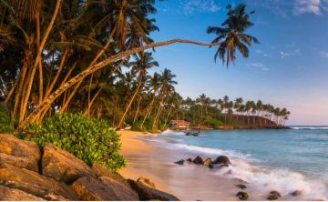 Srilanka At Ease with Culture Hill Country  Beach
