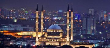 BLOOM OF TURKEY