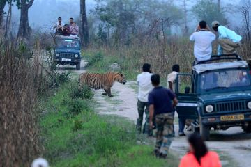 Assam and Meghalaya Tour in 4 Nights and 5 Days