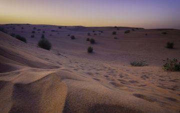 Dubai Adventure Special Holiday