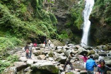 TPJ - 213 darjeeling  pelling  kalimpong  gangtok  tour