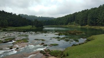 MYSORE OOTY TOUR PACKAGE FOR 03 NIGHTS/ 04 DAYS