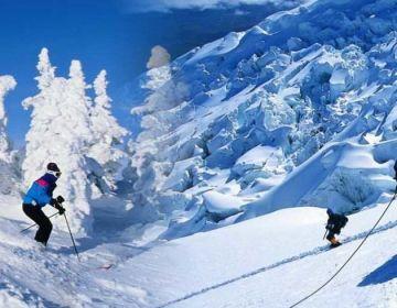Shimla With Manali Honeymoon