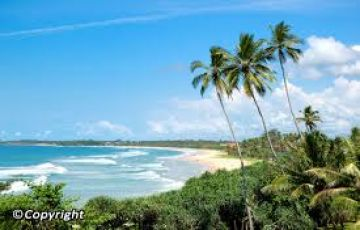 Sri Lanka Tour in 4 star property