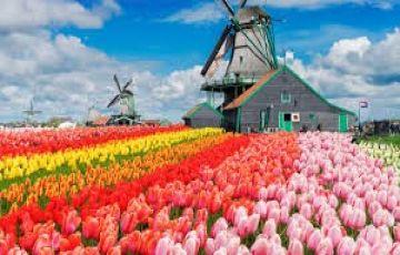 Europe trip to Austria, Switzerland And Amsterdam