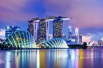 WONDERFUL SINGAPORE