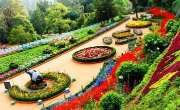Enjoy summer vacation in Coorg & Ooty