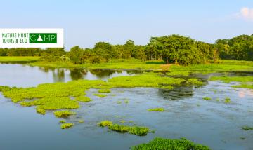 Assam Destination