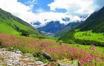 Valley of Flower Trekking Tour
