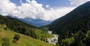 Elegant Kashmir