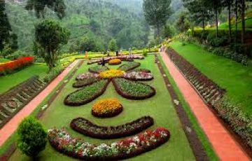 7 nights/8 days Honeymoon Package from Bangalore to Mysore Bandipur Ooty Coorg Mangaluru