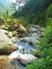 Khabru Trek/Jungle Camp