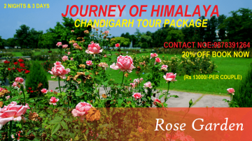 Special Tour Package for Chandigarh